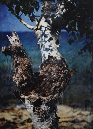The Magus - Phillip Connolly