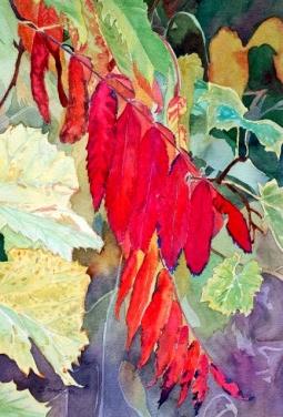 A Study in Scarlet - Susan Watson, Watercolour on paper