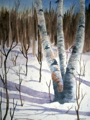 Birch Trees - Sue Dyment