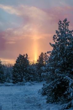 BKerton - sunset Tower photo